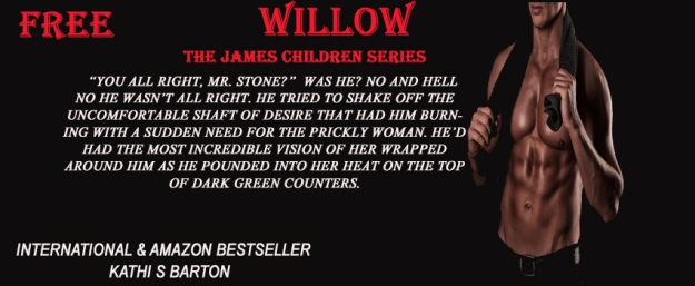 Willow Teaser 2