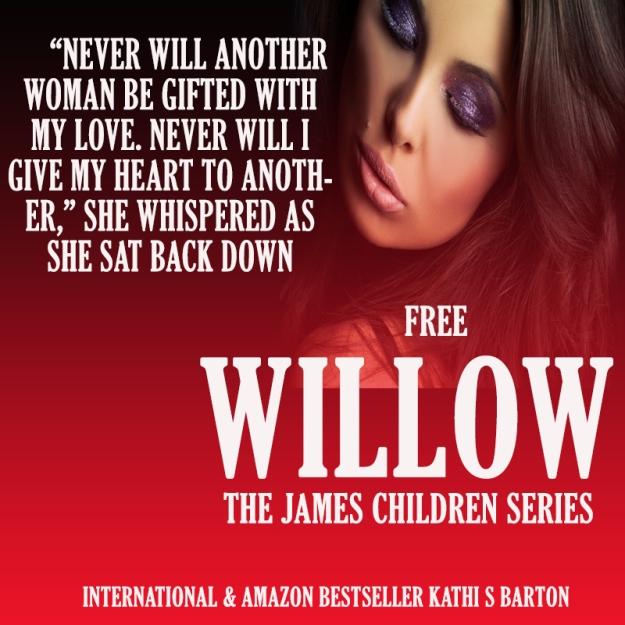 Willow Teaser 3